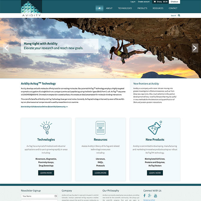 Avidity Homepage Design