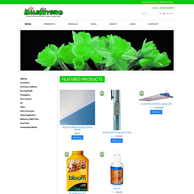 Mile Hydro Homepage Design